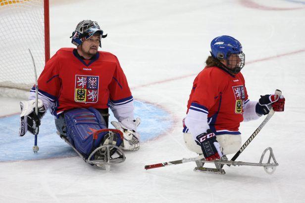 V paralympijské výpravě budou jen lyžaři a sledge hokejisté