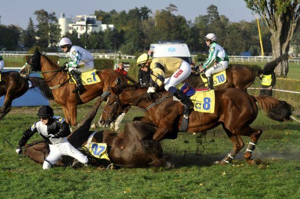 Velkou pardubickou pojede jen patnáct koní, chybí obhájce Ribelino