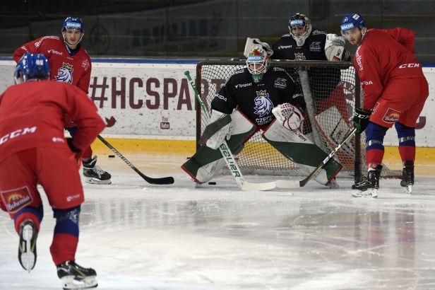 První test po důkladné přípravě před MS. Čeští hokejisté se střetnou s Rakouskem