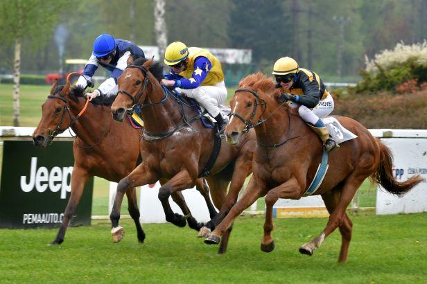 V evropské konkurenci byli čeští koně v Bratislavě vidět