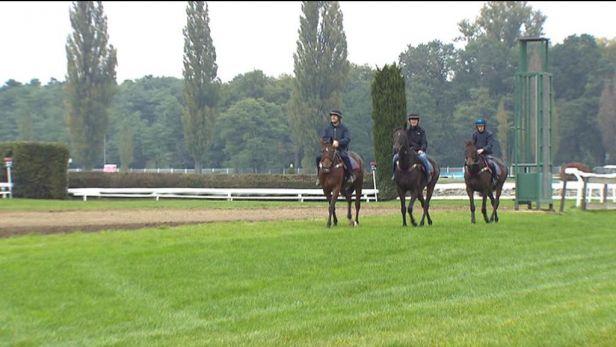 Koně z Irska trénovali pod dohledem zkušeného Bolgera