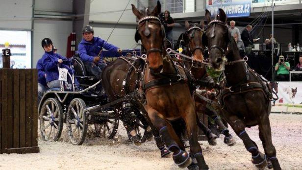 V Lysé nad Labem začíná tradiční Jezdecký festival
