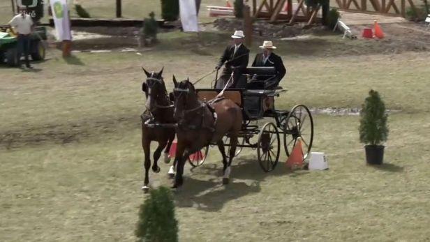 V Semicích se uskutečnilo MČR v koňských spřeženích